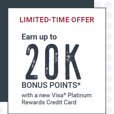 Credit Card Bonus Points Offer