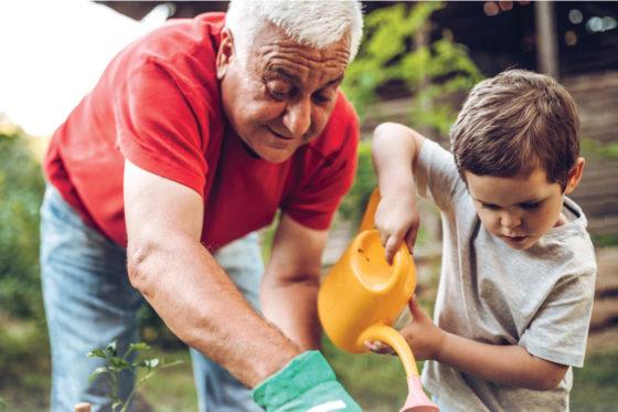 grandfather and boy gardening