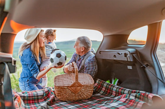 family picnic with car