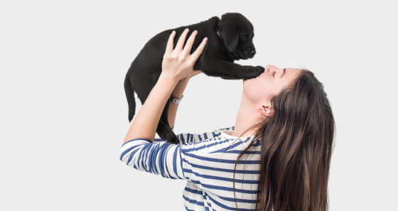 Girl holding up black lab puppy